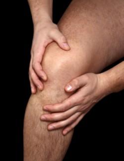 Strong leg muscles