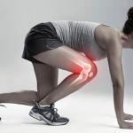 women's knee
